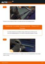 PDF manual de reemplazo: Limpiaparabrisas CITROËN C3 I Hatchback (FC_, FN_) delanteras y traseras