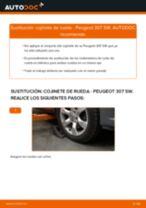 Reemplazar Rodamiento de rueda PEUGEOT 307: pdf gratis
