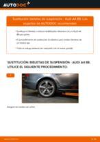 Manual de instrucciones AUDI A5