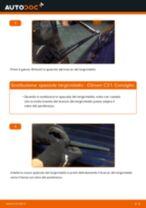 Come cambiare spazzole tergicristallo della parte posteriore su Citroen C3 1 - Guida alla sostituzione