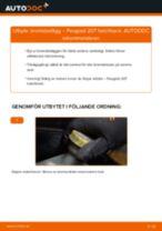 Byta bromsbelägg bak på Peugeot 207 hatchback – utbytesguide