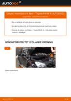 PDF guide för byta: Oljefilter TOYOTA RAV 4 III (ACA3_, ACE_, ALA3_, GSA3_, ZSA3_)