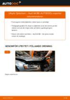 Byta fjäderben fram på Audi A4 B8 – utbytesguide
