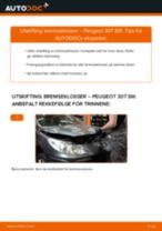 Mekanikerens anbefalinger om bytte av PEUGEOT Peugeot 307 SW 1.6 16V Fjærer