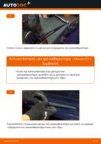 Πώς να αλλάξετε μάκτρο καθαριστήρα πίσω σε Citroen C3 1 - Οδηγίες αντικατάστασης