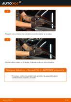 Kako zamenjati avtodel brisalce spredaj na avtu Renault Clio 2 – vodnik menjave