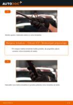Kako zamenjati avtodel brisalce spredaj na avtu Citroen C3 1 – vodnik menjave