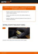 Kaip pakeisti gale ir priekyje Stabdžių Kaladėlės PEUGEOT 207 (WA_, WC_) - instrukcijos internetinės