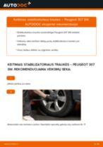 Instrukcijos PDF apie 307 priežiūrą