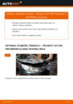 Žingsnis po žingsnio remonto vadovas Peugeot 307 Universalas