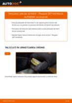 Cum să schimbați: plăcuțe de frână din spate la Peugeot 207 hatchback   Ghid de înlocuire