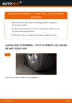 Schritt-für-Schritt-PDF-Tutorial zum Halter, Stabilisatorlagerung-Austausch beim Citroen Xsara Picasso