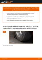 Come cambiare ammortizzatore a molla della parte anteriore su Toyota Prado J120 - Guida alla sostituzione