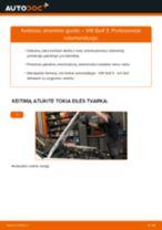 Instrukcijos PDF apie SHARAN priežiūrą