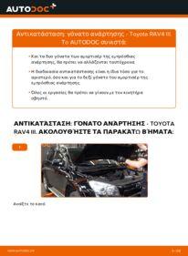 Πώς να πραγματοποιήσετε αντικατάσταση: Αμορτισέρ σε 2.2 D 4WD (ALA30_) Toyota RAV4 III