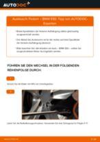Montage Lagerung Radlagergehäuse BMW 3 Coupe (E92) - Schritt für Schritt Anleitung