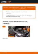 Instrukcja warsztatu dla BMW E64