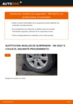 Aprender cómo solucionar el problema con Muelles de Suspensión delanteras y traseras VW