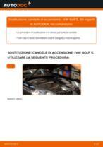 PDF manuale di sostituzione: Candele motore VW Golf V Hatchback (1K1)