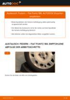 Brauchbare Handbuch zum Austausch von Federn beim FIAT PUNTO