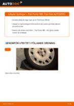 Byta hjullager bak på Fiat Punto 188 – utbytesguide