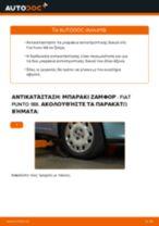 Οδηγός επισκευής βήμα - βήμα Fiat Punto Evo