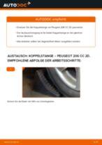 Wie hinten links Pendelstütze auswechseln und einstellen: kostenloser PDF-Anleitung