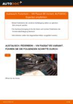 Schritt-für-Schritt-PDF-Tutorial zum Achskörperlager-Austausch beim Ford StreetKA Cabrio
