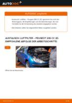 Wie Peugeot 206 CC 2D Luftfilter wechseln - Anleitung