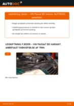 Hvordan skifter man Hjullejesæt bag og foran SEAT ALTEA - manual online