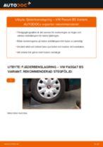 Byta fjäderbenslagring bak på VW Passat B5 Variant – utbytesguide