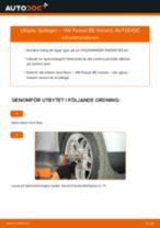 Steg-för-steg-guide i PDF om att byta Hjullager i VW PASSAT Variant (3B6)