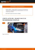 Bilmekanikers rekommendationer om att byta PEUGEOT Peugeot 206 cc 2d 2.0 S16 Bränslefilter