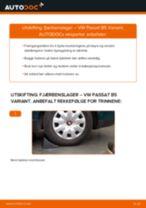 Veiledning på nettet for å skifte Slitasjevarsler bremseklosser i BMW E53 selv