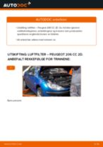 Mekanikerens anbefalinger om bytte av PEUGEOT Peugeot 206 cc 2d 2.0 S16 Oljefilter