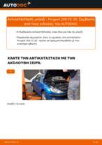 DENSO 4617 για 206 CC (2D) | PDF οδηγίες αντικατάστασης