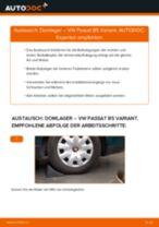 Domlager hinten selber wechseln: VW Passat B5 Variant - Austauschanleitung