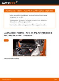 Wie der Wechsel durchführt wird: Federn 3.0 TDI quattro Audi A6 C6 tauschen