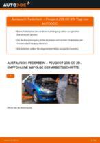 Wie Peugeot 206 CC 2D Federbein vorne wechseln - Anleitung