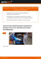 Cómo cambiar y ajustar Amortiguador PEUGEOT 206: tutorial pdf