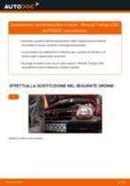 Come cambiare ammortizzatore a molla della parte anteriore su Renault Twingo C06 - Guida alla sostituzione