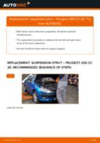 Changing Shock Absorber PEUGEOT 206: workshop manual