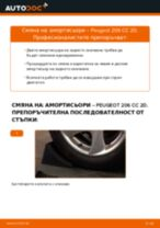 STARK SKSA-0132893 за 206 CC (2D) | PDF ръководство за смяна