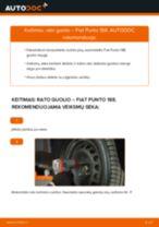 Kaip pakeisti Fiat Punto 188 rato guolio: priekis - keitimo instrukcija