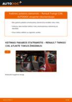 Kaip pakeisti Renault Twingo C06 pakabos statramstis: galas - keitimo instrukcija