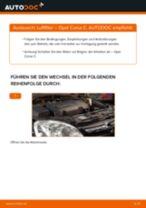 Wie Getriebelagerung beim FIAT DUCATO Platform/Chassis (250) wechseln - Handbuch online