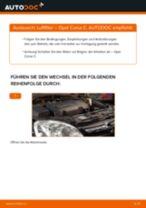 Hinweise des Automechanikers zum Wechseln von OPEL Opel Meriva A 1.6 16V (E75) Luftfilter