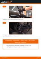 Udskift viskerblade bag - Opel Corsa C | Brugeranvisning