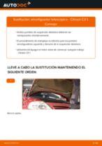 CITROËN C2 manual de solución de problemas