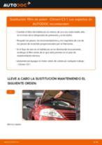 Tutorial de reparación y mantenimiento de CITROËN C2